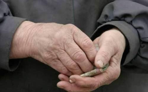 Молодий київський пенсіонер-шахрай вкрав у держави 500 000 гривень