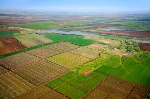 З 6 жовтня 2015 року для українців буде відкритий доступ до Державного земельного кадастру